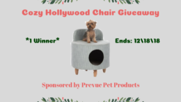 Cozy Hollywood Chair Giveaway
